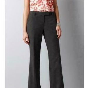 NWT loft julie trouser!